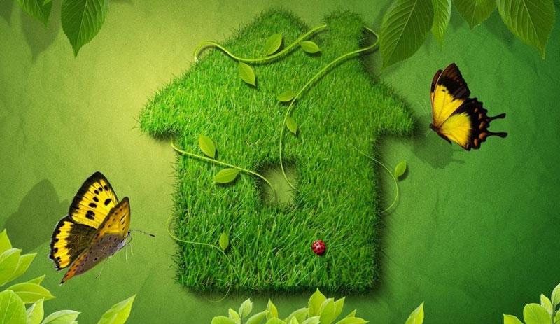 konkurs-po-ekologii-dlya-shkolnikov